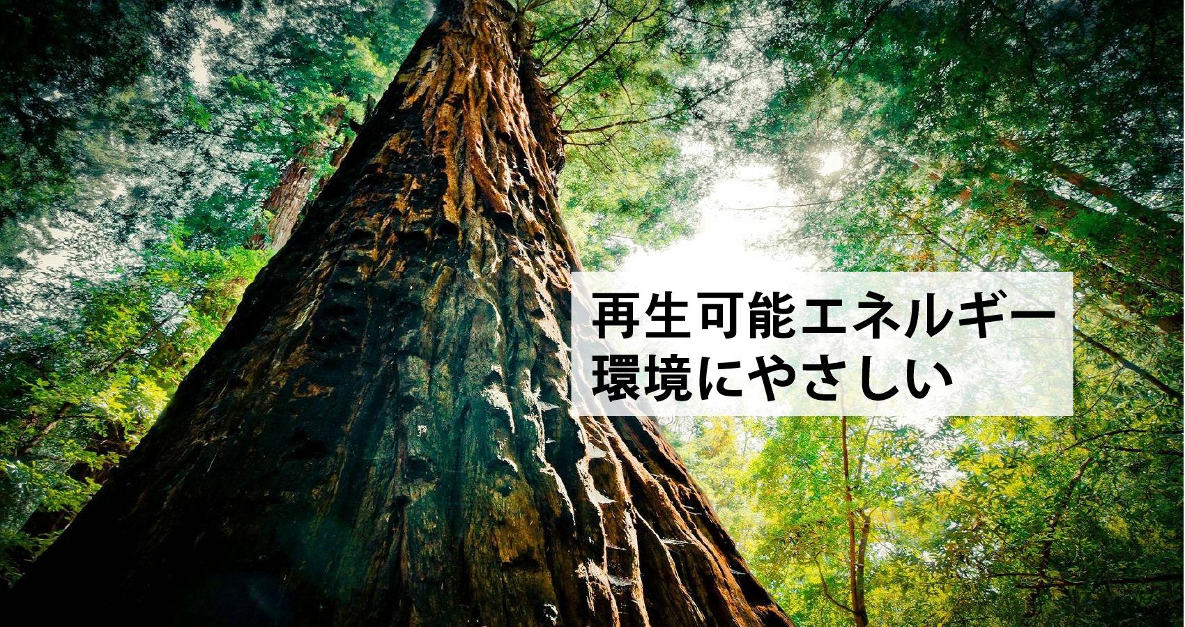 JPN.Banner__1700X900-01